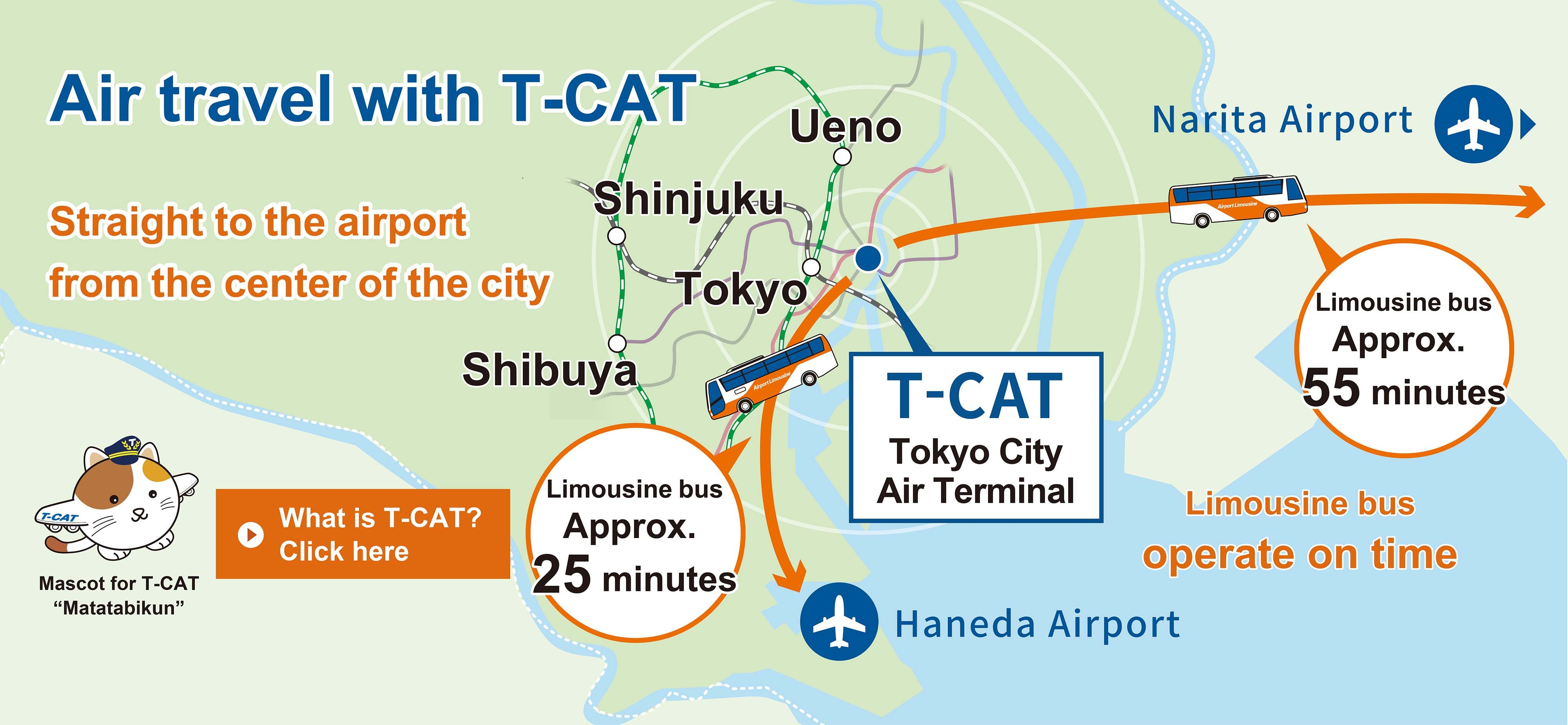 Air travel with T-CAT